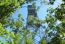 Stissing Fire Tower near Brook n Wood Campground